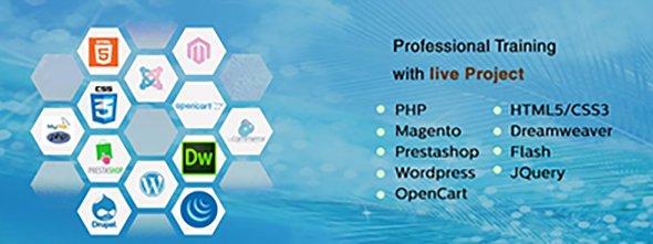 web-development-courses1-1-590×221